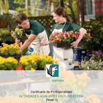 CP AGAJ0108 Act aux florister'a